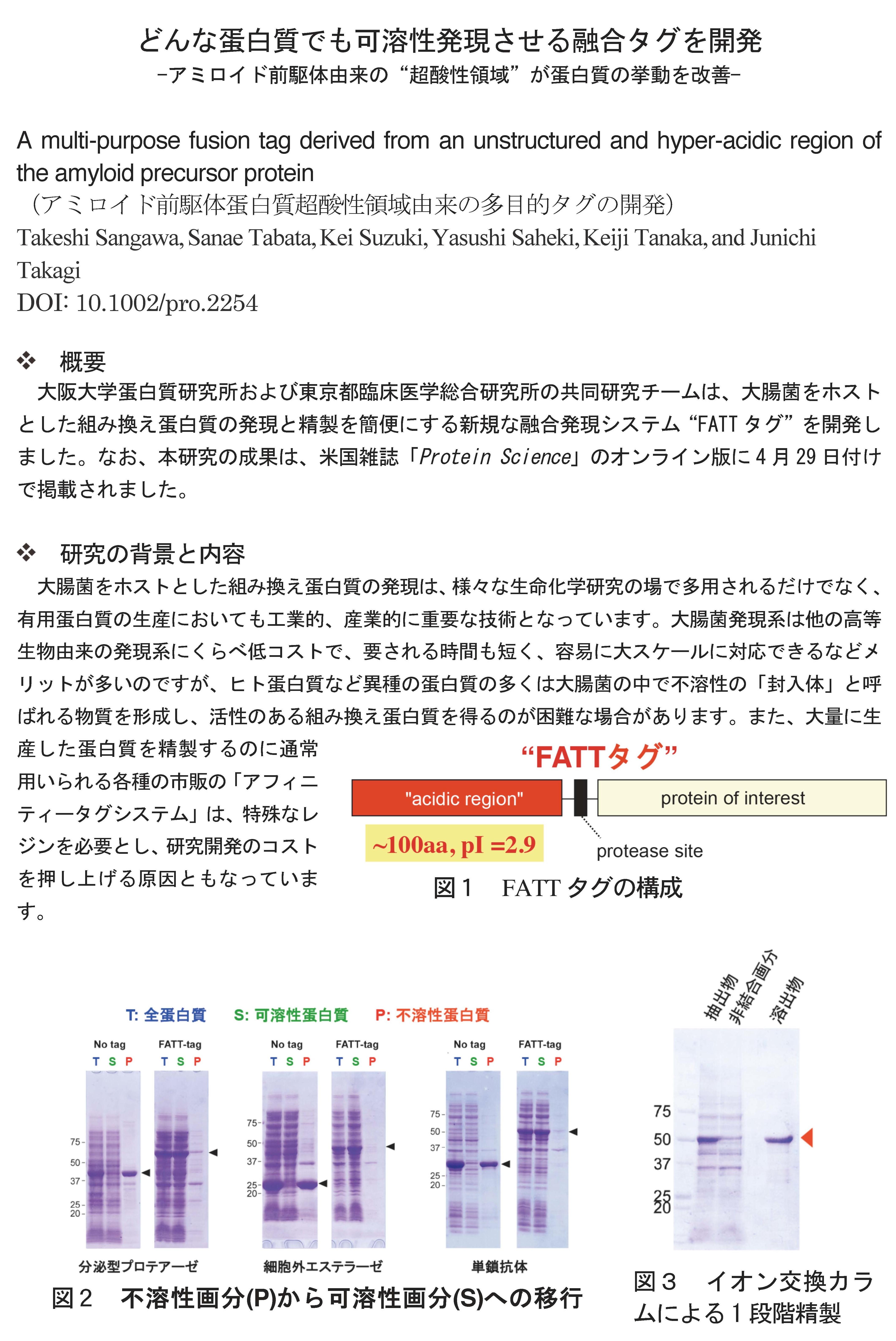 20130429_takagi_1.jpg