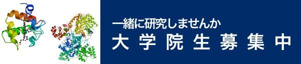 banner_insei